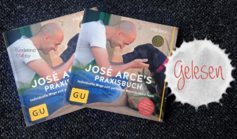 Werbung & Gewinnspiel: Praxishandbuch von José Arce