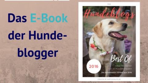 Ricas Lesetipp: Hundeblogs – Best of 2016