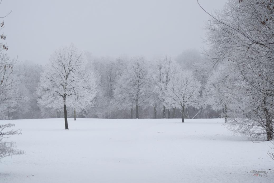 Schneewunderland