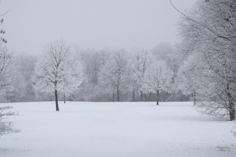 Das Winterwonderland