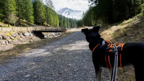 Eine grausige Fahrt zum schönsten Ort in Liechtenstein