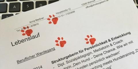 Wie du im Vorstellungsgespräch erreichst, dass du deinen Hund mit ins Büro bringen darfst