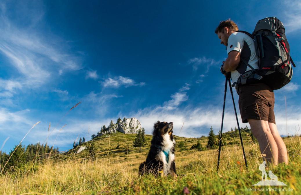 Tipps zu für Wanderungen mit dem Hund