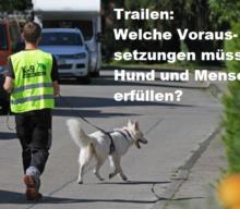 Welche Voraussetzungen müssen Hund und Halter erfüllen, um trailen zu können?