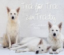 TRICK FÜR TRICK ZUM TRICKDOG: AUF EINEN GEGENSTAND STÜTZEN
