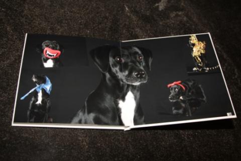 Fotobuch von Saal Digital + Gutschein
