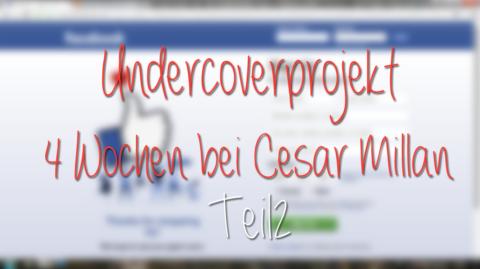 Cesar Millan – Teil 2 des Undercoverprojekts