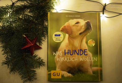 Buchwoche: Was Hunde wirklich wollen [Werbung]