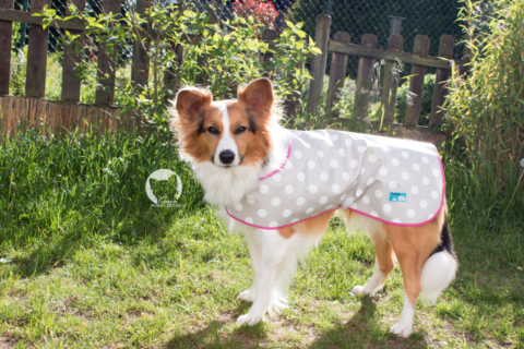 DIY – Hunderegenmantel
