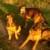 Profilbild von Sam, Antonie, Knusper