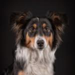 Profilbild von Ava