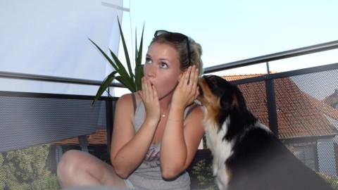 """Hundetrick – """"Flüstern"""""""