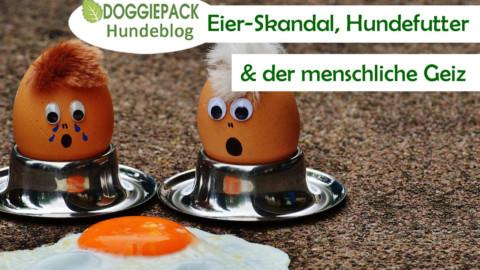 Eier-Skandal, Hundefutter und der menschliche Geiz