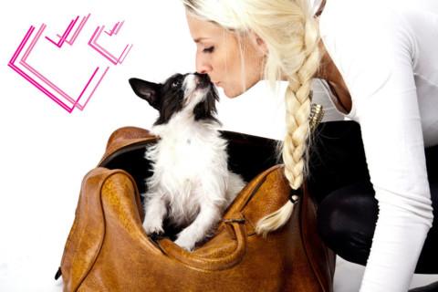 ValentiensDOG: Meine Liebeserklärung an mein Hund… (Mitmach-Aktion :)