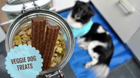 Ausgefallene vegetarische Hundesnacks – Produkt Test