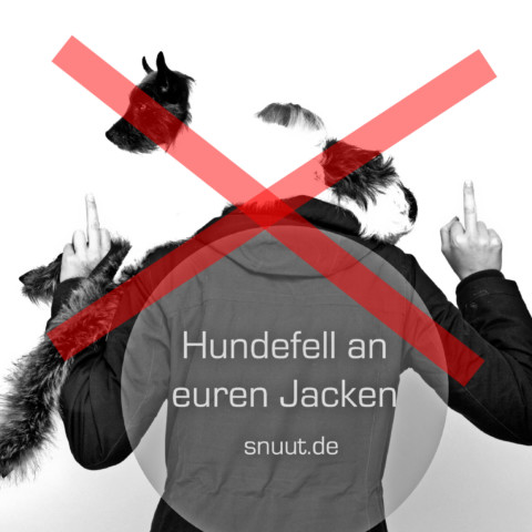Hundefell an euren Jacken – Mode, Moneten und Mörder