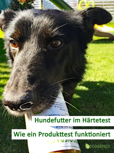 Hundefutter Produkttest  – wie funktioniert das bei Euch?