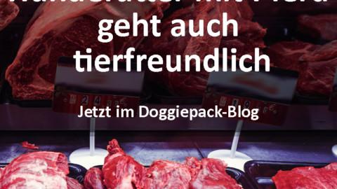 Pferdefleisch im Hundefutter geht auch tierfreundlich