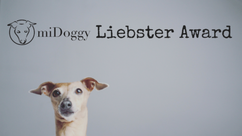 Der miDoggy Liebster Award