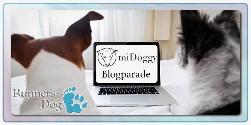 miDoggy_Blogparade