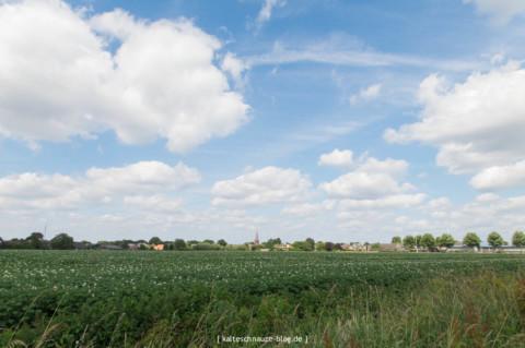 Die schönste Wanderroute, Horst, Knoten und eine Wasserleiche