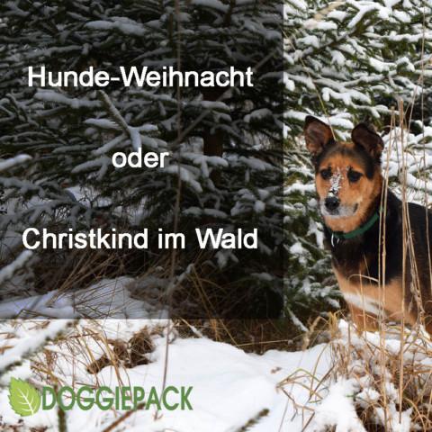 Hunde-Weihnacht oder Christkind im Wald