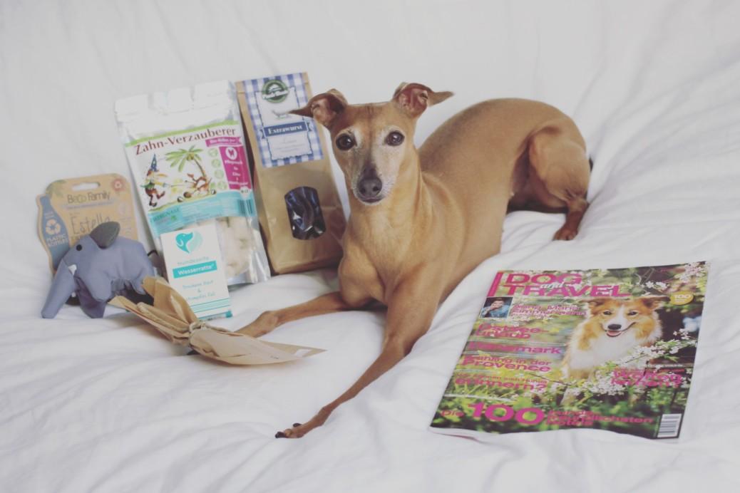 Überraschungsbox für Hunde Lieblingbox Erfahrungen