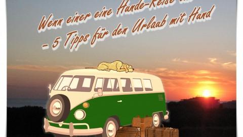 WENN EINER EINE HUNDE-REISE TUT – 5 TIPPS FÜR DEN URLAUB MIT HUND