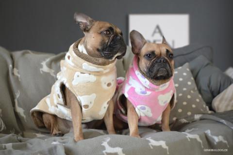 Bademäntel für Hunde