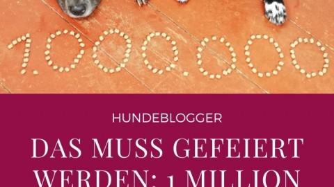 Wir feiern 1 Million Blogaufrufe