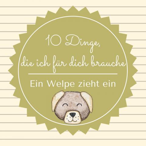 10 Dinge die ich für dich brauche: Ein Welpe zieht ein!