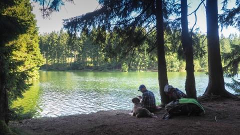 11 Seen in 24 Stunden – Sommerwanderung mit Hund im Harz