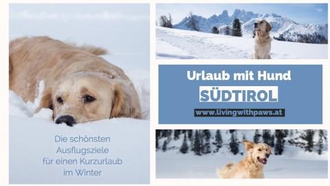 Urlaub mit Hund – Südtirol, Italien