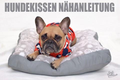 Anleitung: Hundekissen selbst nähen
