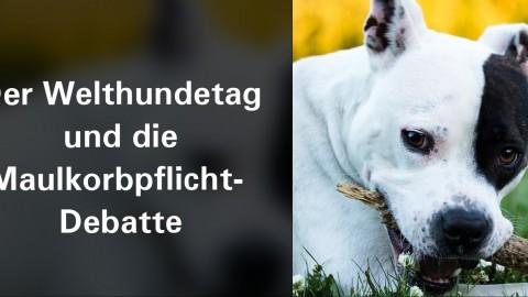 Der Welthundetag und die Maulkorbpflicht- Debatte