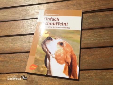 Der Les Wauz-Hundetipp: Einfach schnüffeln – die besten Nasenspiele für deinen Hund