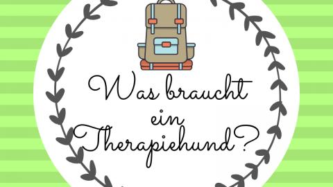 [Werbung] Was braucht ein Therapiehund?