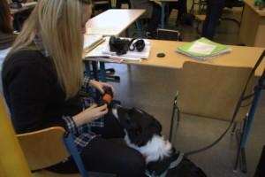 Früh übt sich... Schulhund Käpt´n Jack lernt, Schüler aufzurufen