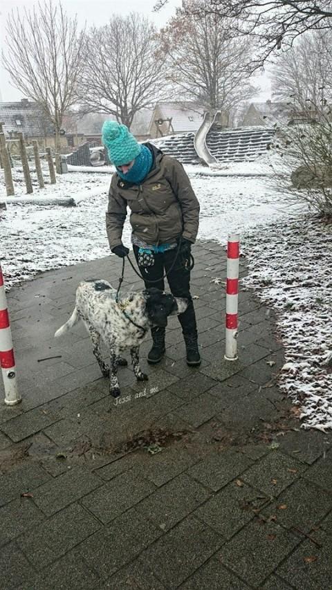 Begegnung im Schnee