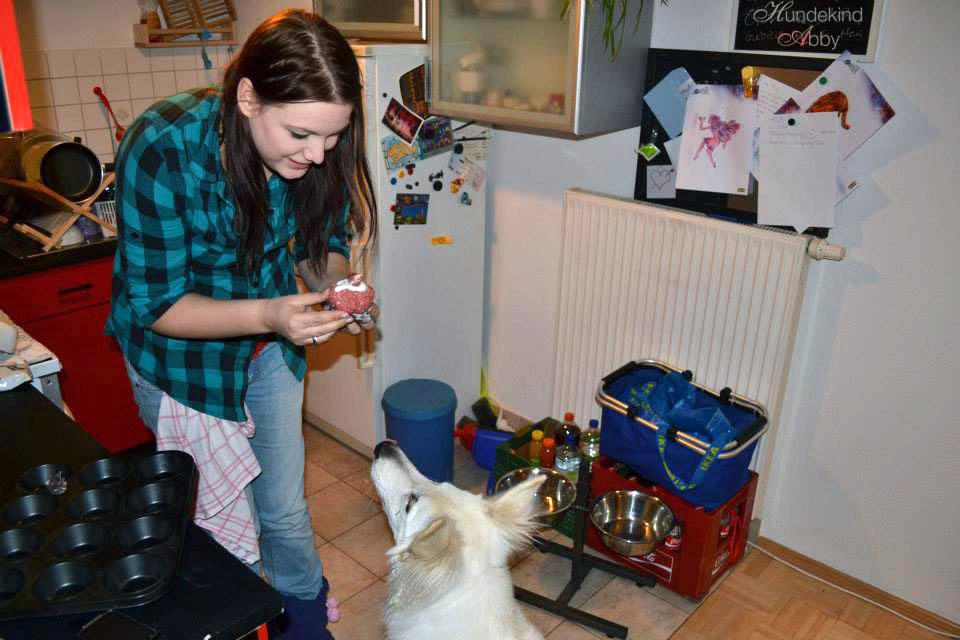 Abby Geburtstagskuchen Hund