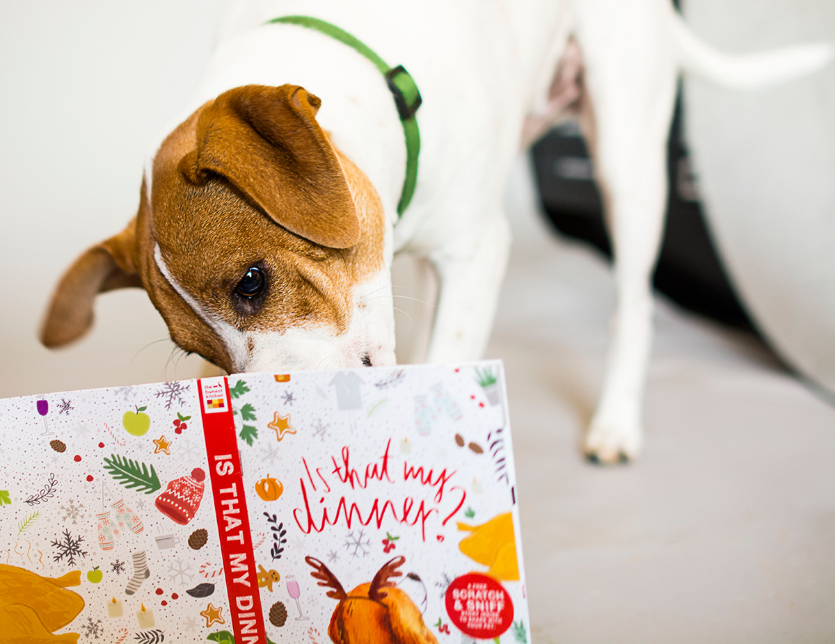 a-scratch-and-sniff-book-for-your-dog