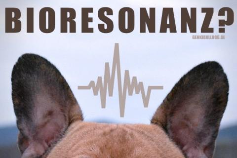 Unsere Erfahrung mit der Bioresonanz