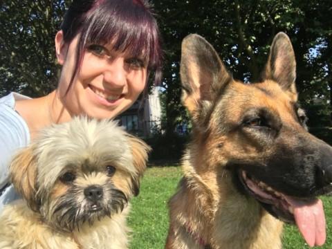Studie über die Beziehung zwischen Mensch und Hund
