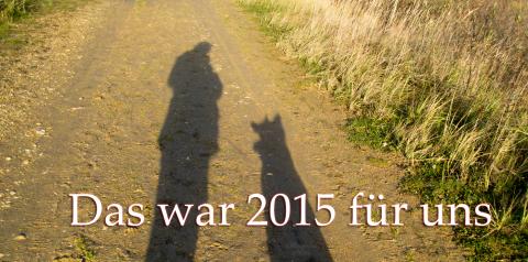 Unser (besonderer) Jahresrückblick 2015
