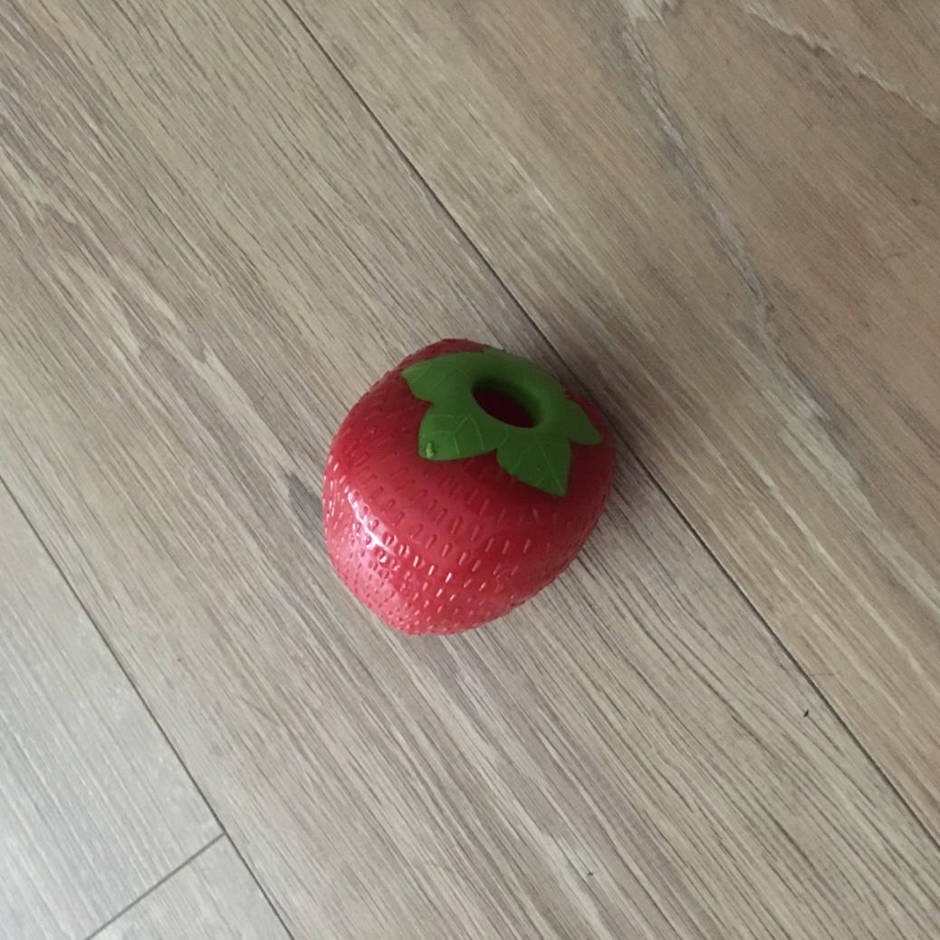 Spielzeug Hund Hundeblog miDoggy