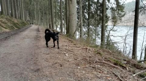 Ausflug auf Pepes Spuren