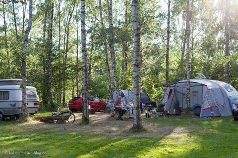Camping mit Hund und Eisvogel