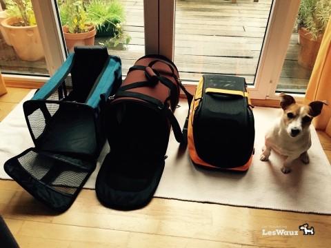 Welche Flugtasche ist für den Hund in der Kabine die richtige?