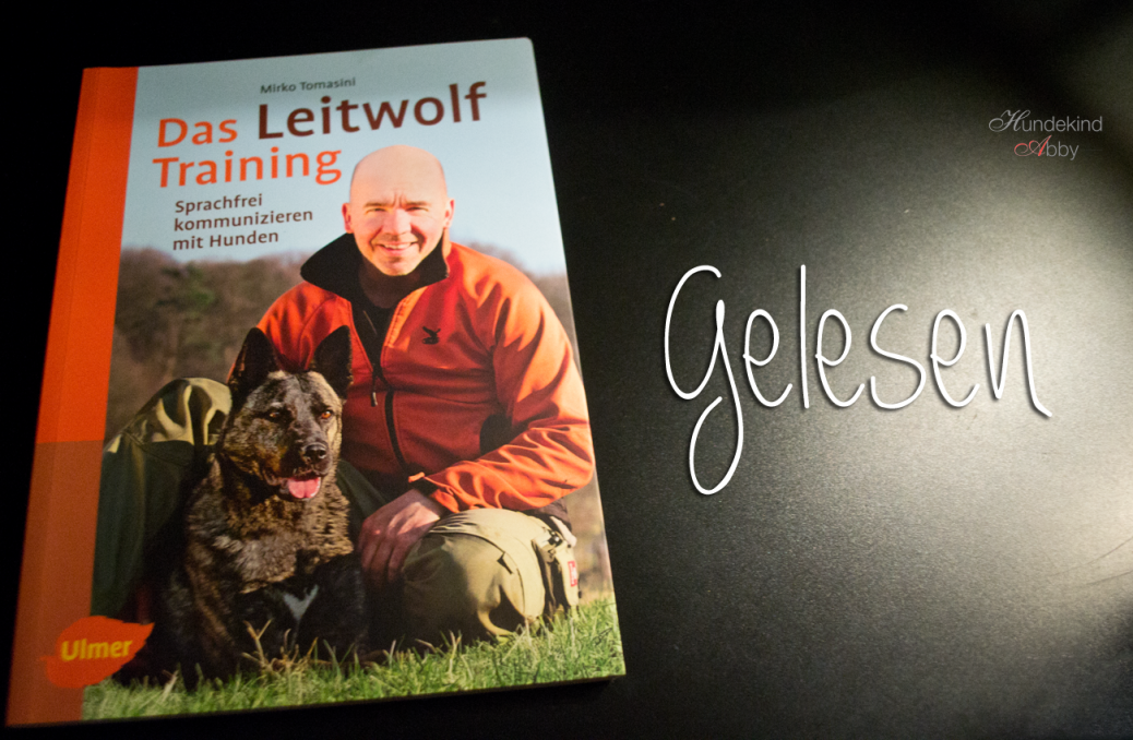 Das Leitwolf Training Rezension