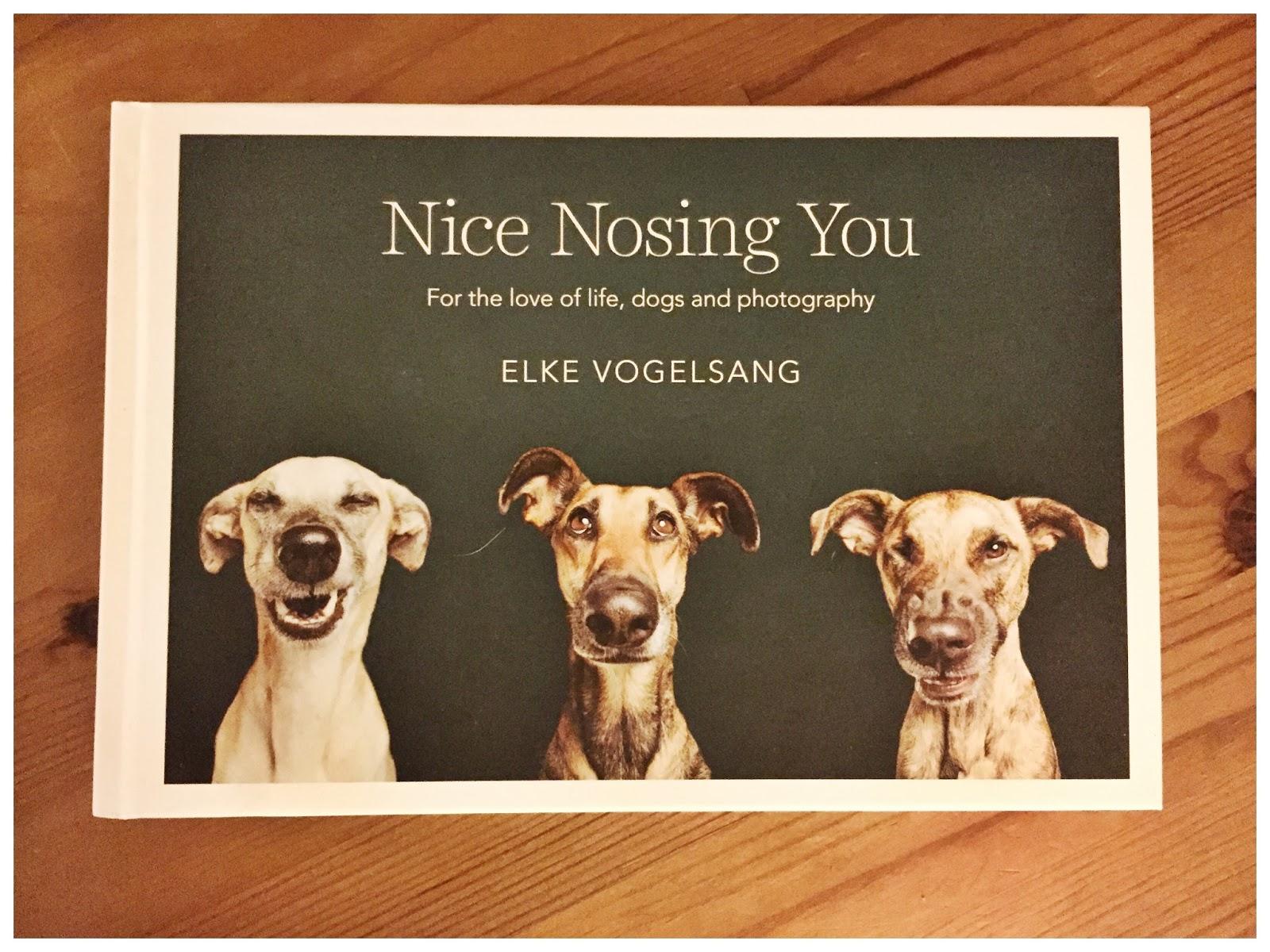 Nice nosing you rezension